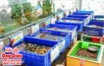 Hải sản tươi sống LaGi – Bình Thuận tại TpHCM giá rẻ