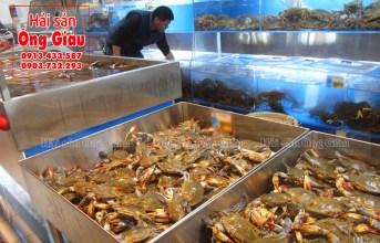 Hải sản tươi sống tại Sài Gòn mua ở đâu