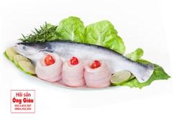 Giá cá basa và cách phân biệt cá basa