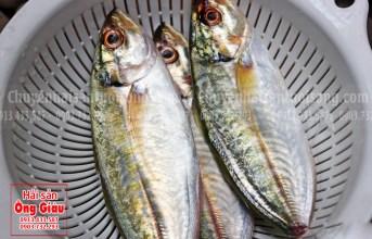 Cá ngân tươi ngon và những món ăn bổ dưỡng