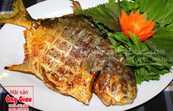 Cách chọn mua và những món ăn thơm ngon từ cá chim đen