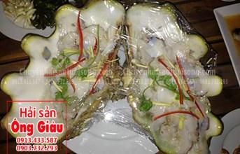 Những món ăn ngon từ ốc tai tượng