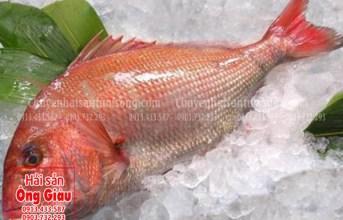 Cá tráp hồng và các món ăn thơm ngon bổ dưỡng