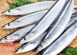 Nơi bán cá thu nhật tươi sống ở tại TP. Hồ Chí Minh hiện nay bao nhiêu
