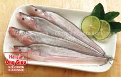 Giá bán cá trèn bầu tươi sống tại TPHCM hiện nay bao nhiêu 1kg
