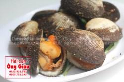Nơi mua sò lông tươi sống tại TP. Hồ Chí Minh hiện nay bao nhiêu