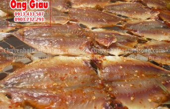 Mua cá khô Thanh Hóa ngon ở đâu tại TpHCM – giá bao nhiêu