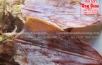 Mực khô Thanh Hóa ở đâu bán tại tphcm -giá bao nhiêu tiền 1 kg
