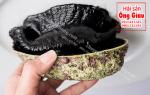 Nơi bán bào ngư New Zealand đen sống tại TpHCM hiện nay