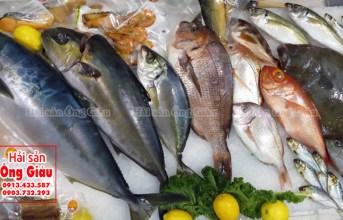 Cửa hàng hải sản Ông Giàu có chuyên bán hải sản đi các tỉnh không