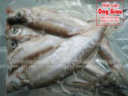 Cá Thiều giá bao nhiêu tiền 1kg – mua ở đâu bán hiện nay