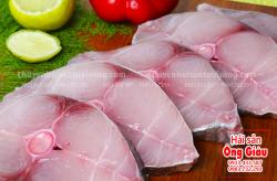 Cá thu tươi cắt khúc lát giá bán bao nhiêu tiền 1kg – mua ở đâu