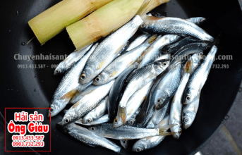 Cách làm nấu cá Linh kho mía ngon đậm đà hương vị khó cưỡng