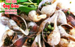Ốc muỗng – loại hải sản hiếm – mua ở đâu trên thị trường TPHCM