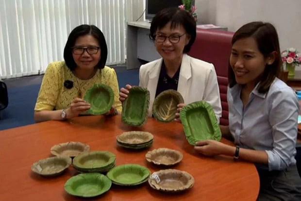 Pesquisadoras tailandesas criam pratos descartáveis feitos de folhas