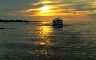 Um recife com mais de 900 km de extensão é encontrado no rio Amazonas