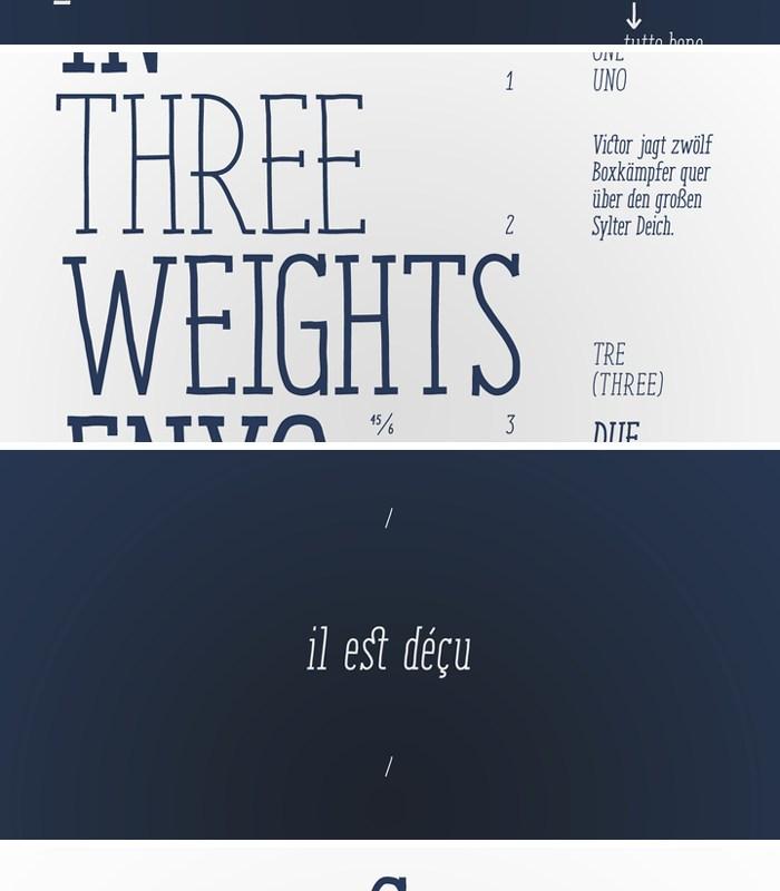 Enyo Serif Font by Antipixel