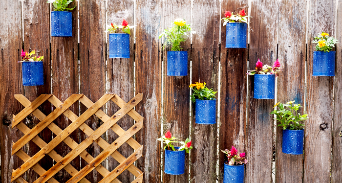 Backyard Tin Can Fence Garden and Trellis