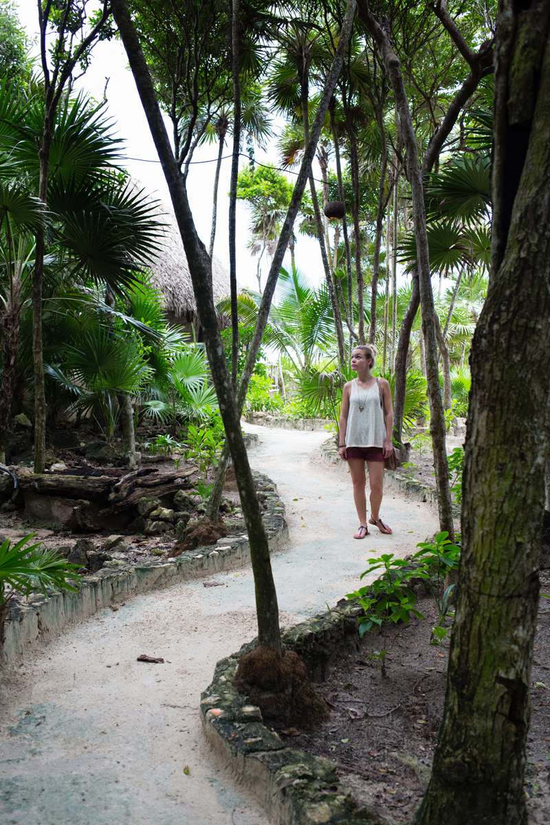 Where The Jungle Meets The Sea - Tulum Mexico