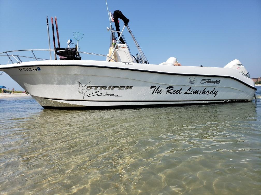 Seaswirl Striper opinions / 21\u0027 - Page 2 - The Hull Truth - Boating