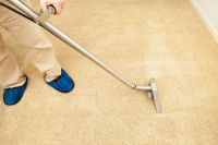 How to Remove Carpet Mildew Smell | DoItYourself.com