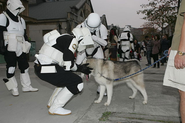 Life_of_a_Chinese_Stormtrooper-39