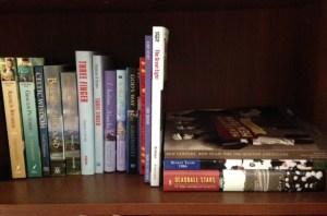 Cindy Thomson's books