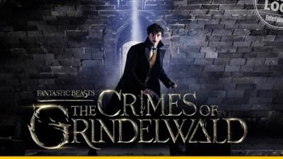 Animales fantasticos y el nuevo peligro en el mundo de J.K. Rowling | Cine O'culto