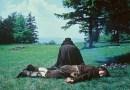 """8 Filmes com Pachelbel's """"Canon in D"""" em sua Trilha Sonora"""