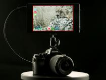 Atomos Shogun 4K HDMI Monitor Recorder: