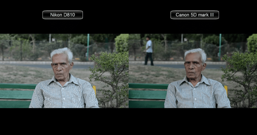 Nikon D810 vs Canon 5D Mark III