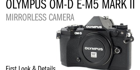 Olympus EM-5 Mark II Underwater Photo & Video Review from Backscatter