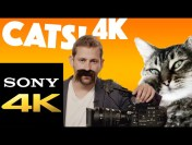 Sony Has a 4K YouTube Channel