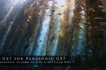 The Panasonic NA-GX7 & Nauticam WWL-1 Wet-Wide Lens Showreel
