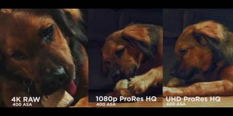 Ursa Mini 4K Camera Test II With Better Lighting from Omar Torres