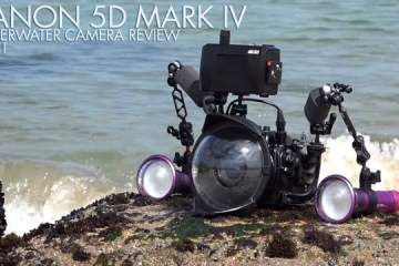 Canon 5D Mark IV Camera Underwater Review