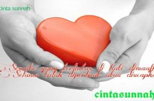 cinta_sunnah_sesuatu_yang_dihati_dimaafkan