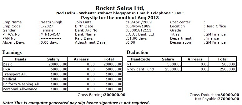 word 2013 salary slip