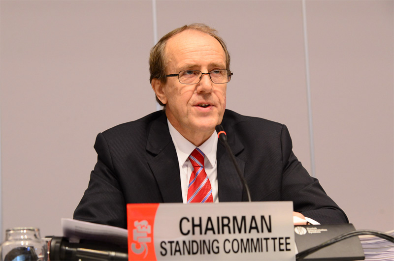 Opening Remarks By Chairman Of The Standing Committee At