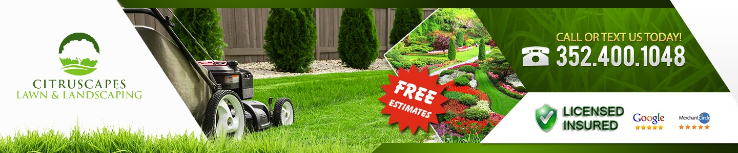 citruscapes lawn & landscaping