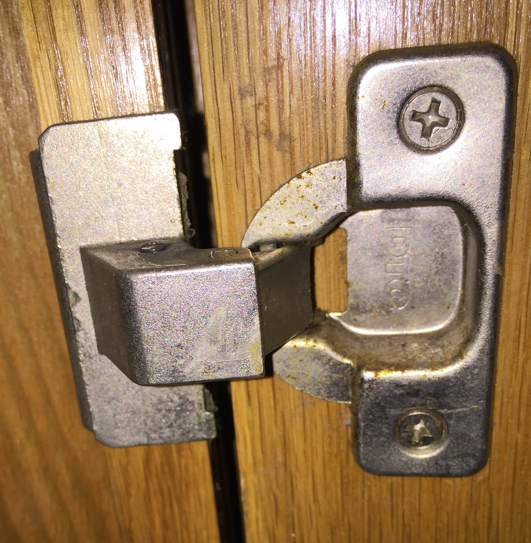 Best Hinges For Kitchen Cabinets Dtc Kitchen Cabinet Hinges Cabinets Matttroy