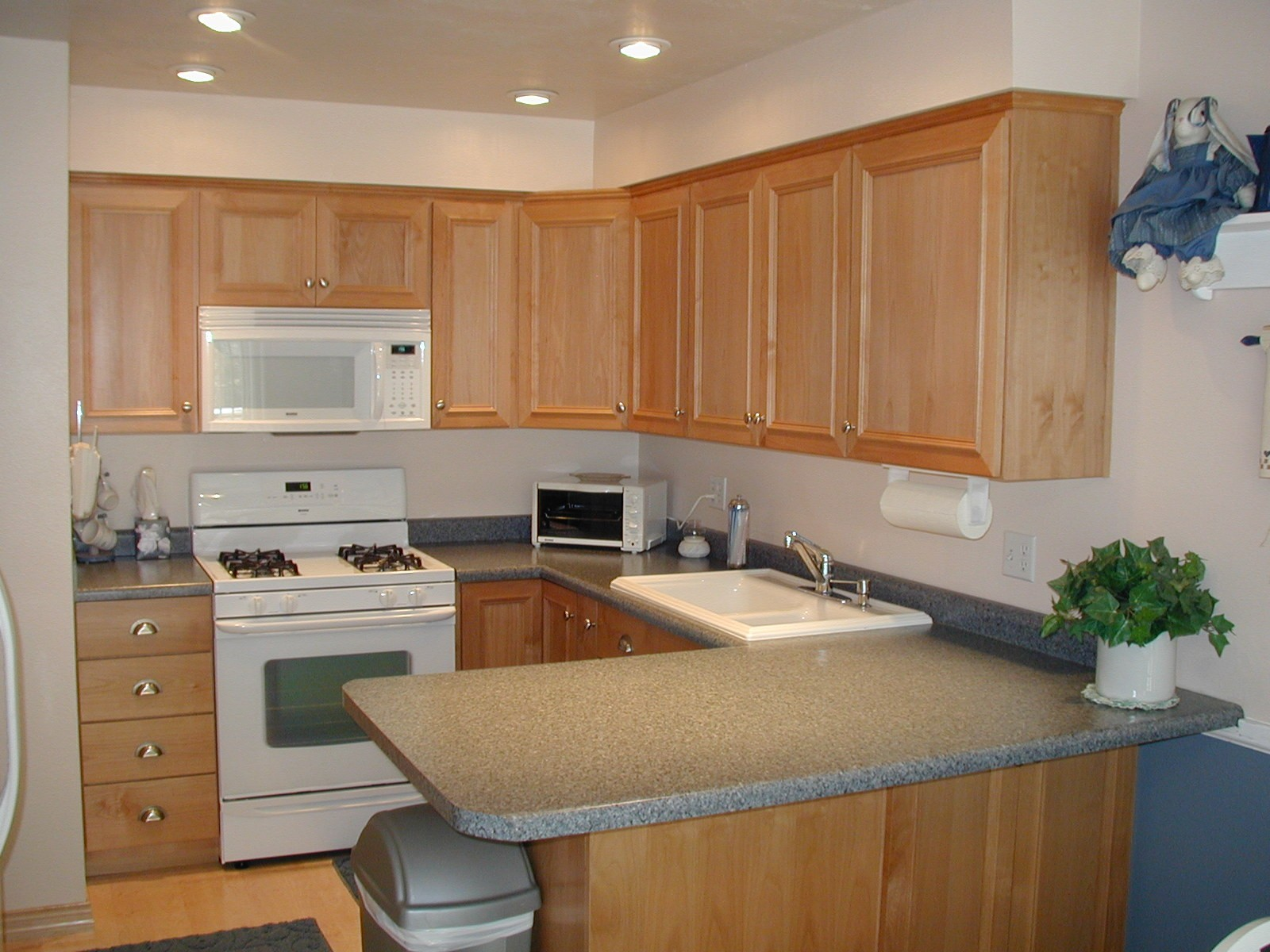 Kitchen Designs With Oak Cabinets And White Appliances Stainless Vs White Appliances Paint Installed Cabinet