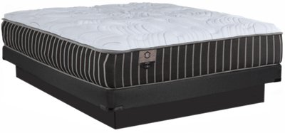 Low Profile Innerspring Mattress City Furniture Kevin Charles Biscayne Innerspring Plush