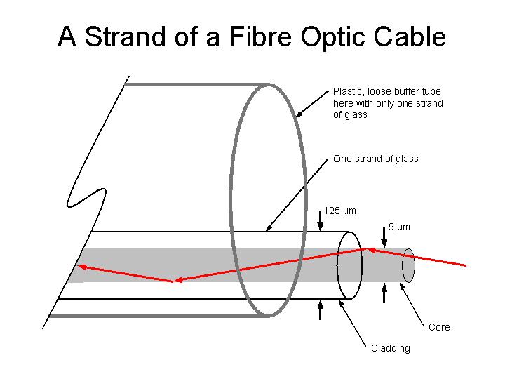 single 7 wire strand diagram