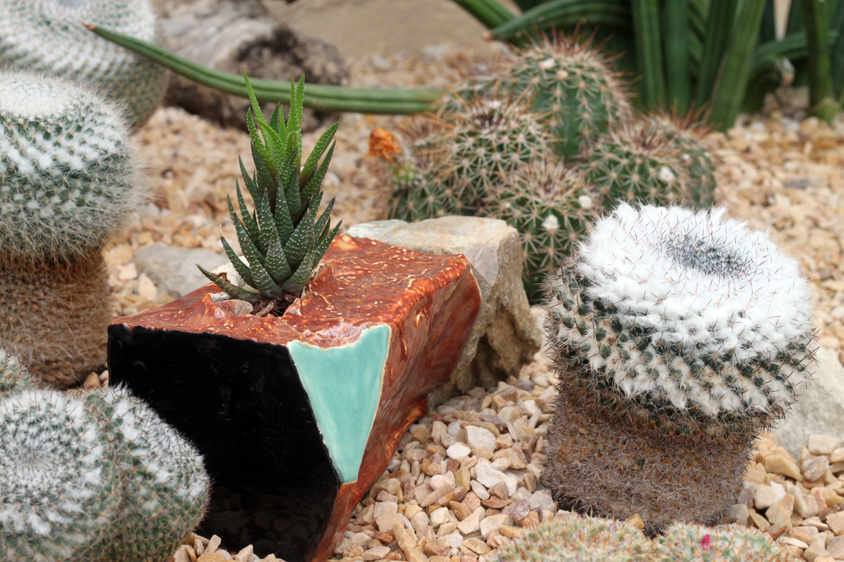 geometric planter installation in Chicago Garfield park conservatory succulent cactus. art city of giants cityofgiants graffiti urban plants nature install public