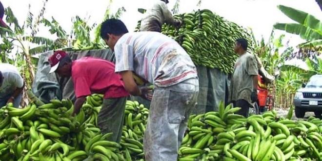 Inminente subida de pasajes y precios de alimentos por aumento peajes