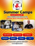 Martial Arts and Bully Safe Summer Camps 2015