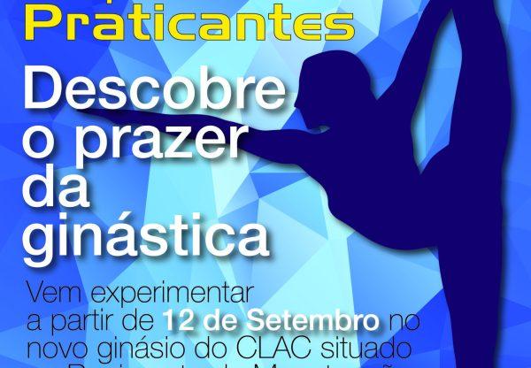informação sobre Ginástica artistica