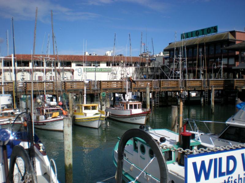 fishermans wharf essay