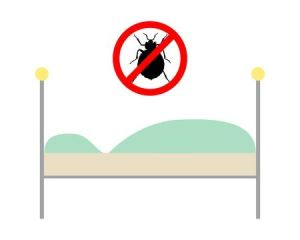 NoBedBugs_123RF_5519282_blog